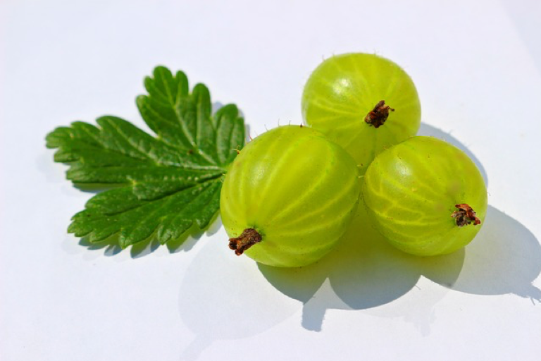Gooseberry (Amla) to restore the hormonal balance and help in PCOS
