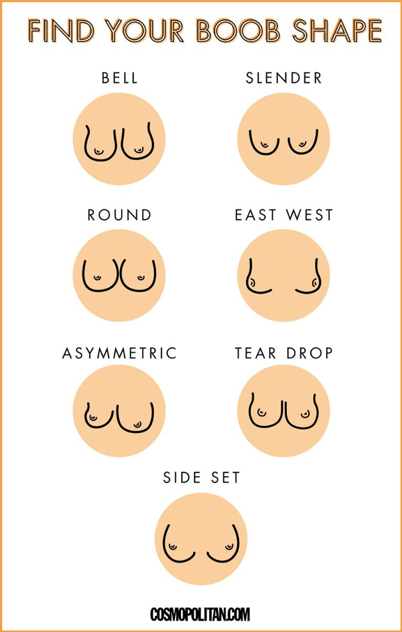 Find your boob shape