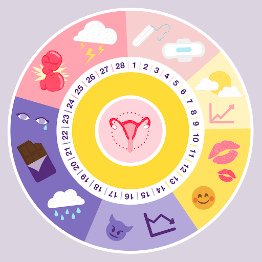 Ovulation cycle affects your dating behavior